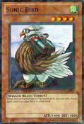 SonicBird-DT05-EN-DNPR-DT