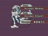 AcrobatMonkey-GX03