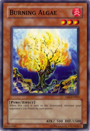 BurningAlgae-DR2-EN-C-UE