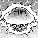 Jellyfish-JP-Manga-DM-CA