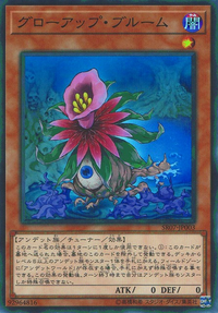 YuGiOh! TCG karta: Glow-Up Bloom