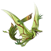 PredaplantHeliamphorhynchus-DULI-EN-VG-NC