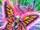 Butterspy