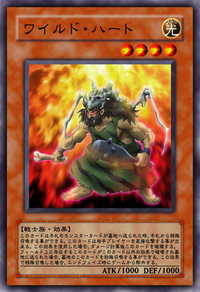 WildHeart-JP-Anime-5D