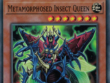 Metamorphosed Insect Queen