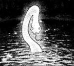 SwampoftheDragonSnake-JP-Manga-GX-CA