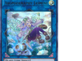 Aromaseraphy Jasmine