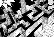 D-033 Maze