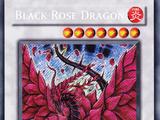 List of Secret Rare cards