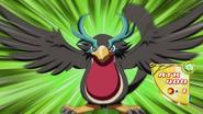 BlackwingOroshitheSquall-JP-Anime-AV-NC
