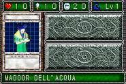 AquaMadoor-DDM-IT-VG