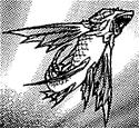 FlyingFish-JP-Manga-DM-CA