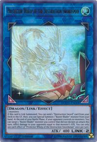 YuGiOh! TCG karta: Protector Whelp of the Destruction Swordsman