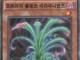 Booster SP: Fusion Enforcers (OCG-KR-1E)