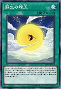RevivalSwarm-CP19-JP-OP