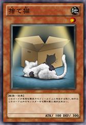 StrayCat-JP-Anime-ZX