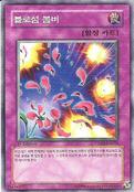 BlossomBombardment-TSHD-KR-C-1E