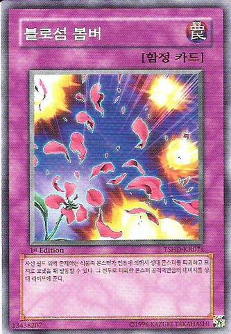 File:BlossomBombardment-TSHD-KR-C-1E.png