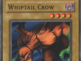 Whiptail Crow