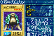 30000YearWhiteTurtle-GB8-JP-VG