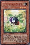NaturiaFruitfly-DT06-JP-DNPR-DT