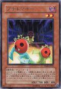 CherryInmato-TSHD-JP-R