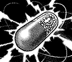 TrickysMagic4-JP-Manga-DM-CA