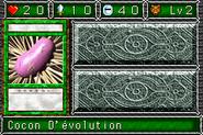 CocoonofEvolution-DDM-FR-VG