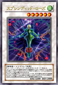 SplendidRose-JP-Anime-5D