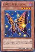 SwallowtailButterspy-GAOV-JP-C