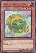 NaturiaPumpkin-STBL-JP-C