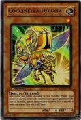 GoldenLadybug-LODT-IT-R-1E