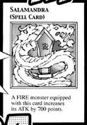Salamandra-EN-Manga-DM