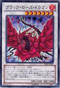 BlackRoseDragon-GS05-JP-C