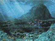 Sunlight Underwater