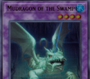 Mudragon of the Swamp