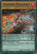MetalfoesSilverd-TDIL-FR-C-1E
