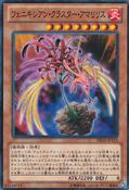 PhoenixianClusterAmaryllis-DE03-JP-C