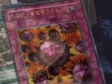 Crush Card