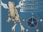 TreebornFrog-WC07