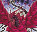 Black Rose Dragon (anime)