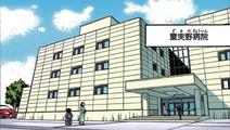 Domino City Hospital