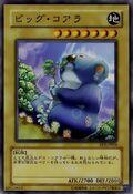 BigKoala-EE2-JP-C