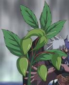SinisterSeeds-JP-Anime-GX-NC-2