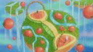 TomatoParadise-JP-Anime-ZX-NC