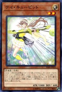 CupidServe-IGAS-JP-NR