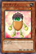 Acorno-JP-Anime-ZX