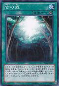 AncientForest-DE04-JP-C