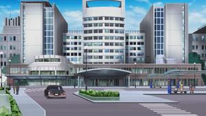 Den City Hospital