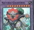 Naturia Gaiastrio